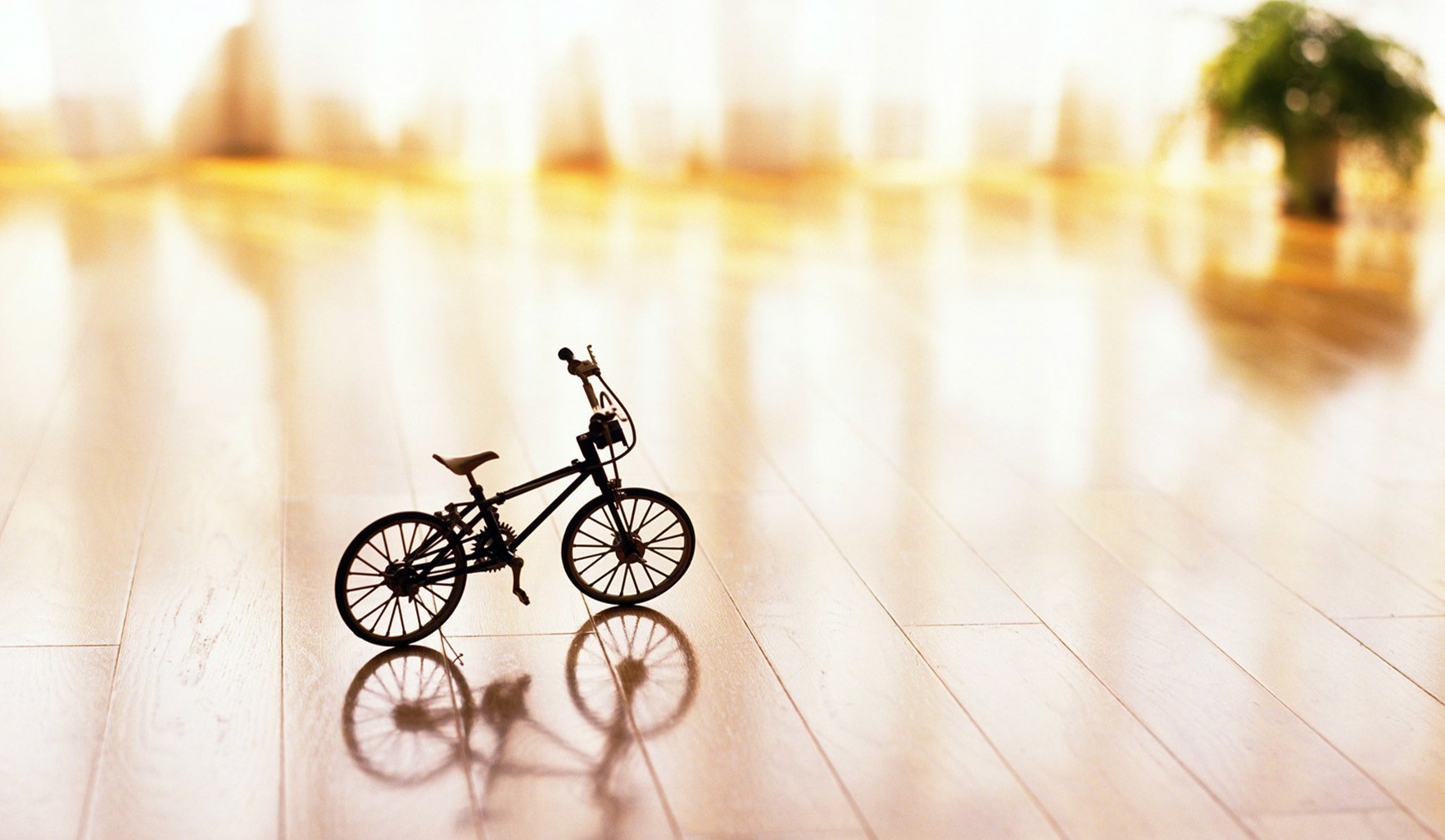 Cute Babies Wallpapers Hd Download Mini Bicycles On The Table Wallpapers Hd Desktop And