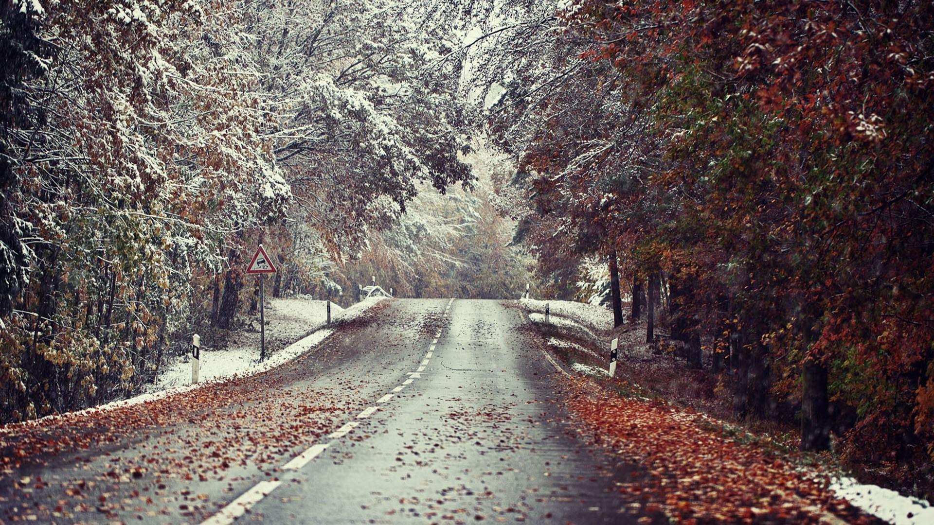 Fall Landscape Computer Wallpaper Winter Landscape Road Snow Leaves Wallpapers Hd