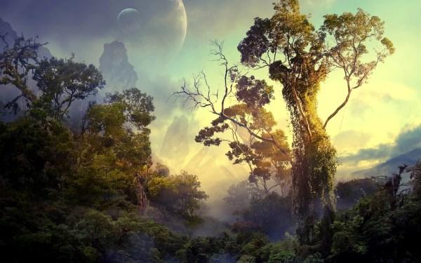 Fantasy Art Digital Nature Landscape Trees Forest