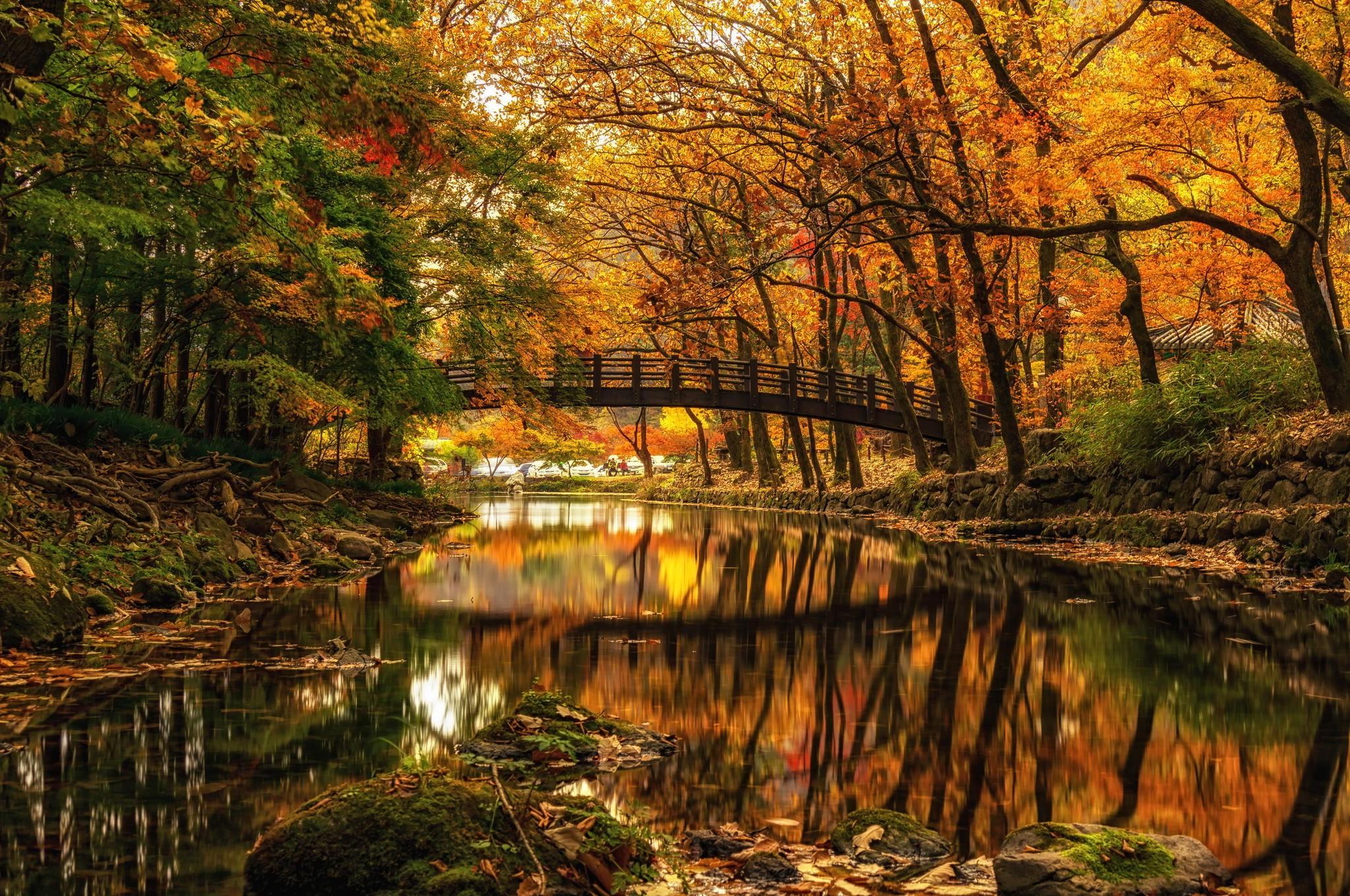 Fall Halloween Computer Wallpaper Nature Landscape Water Trees Forest River Bridge