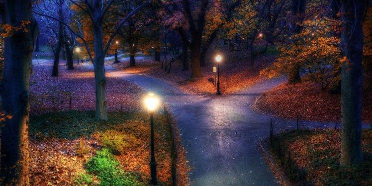 Fall In Love Mobile Wallpaper Fall Park New York City Trees Walkway Street Light