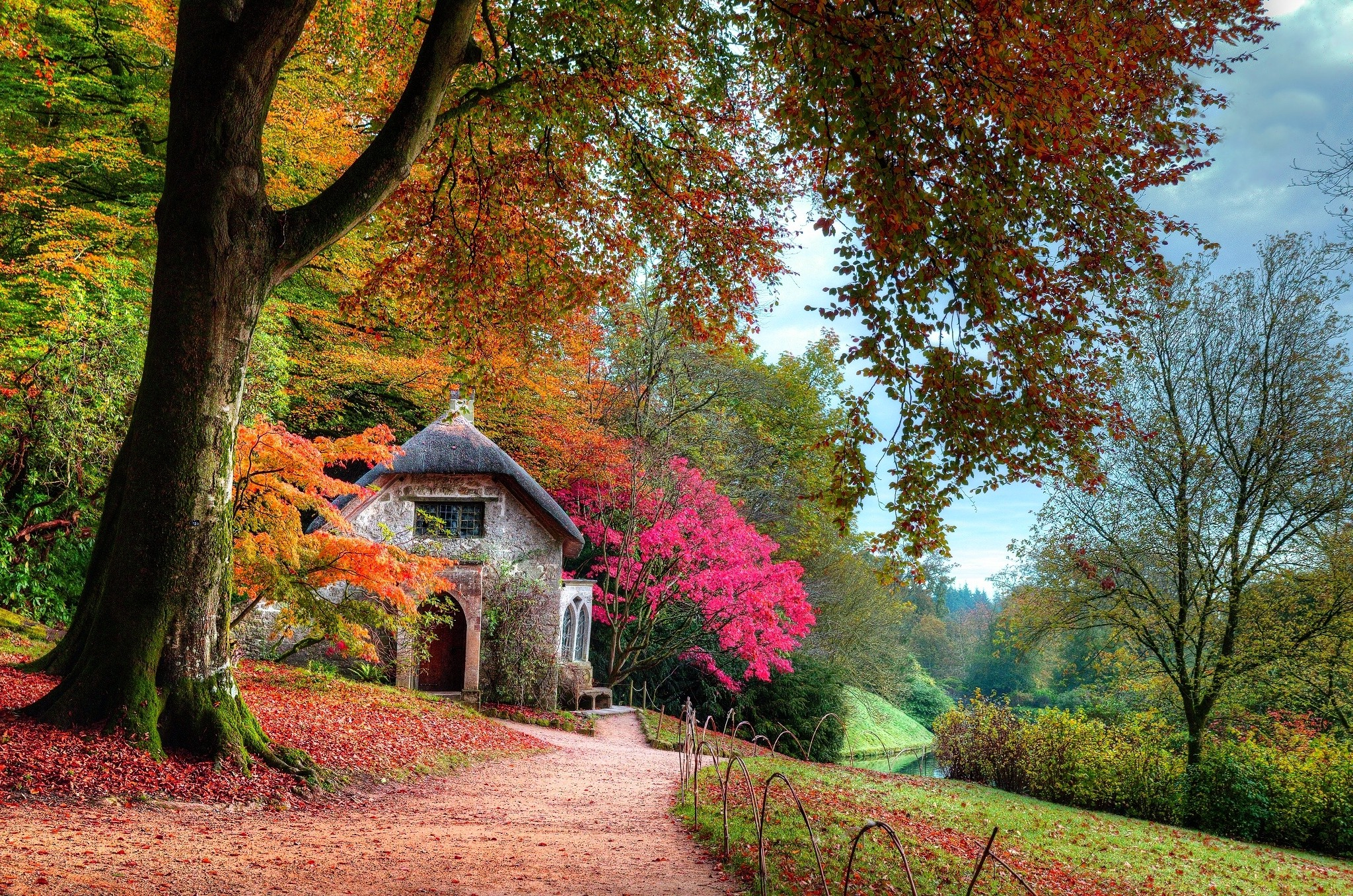Fall New England Wallpaper Fall Garden Cottage Leaves Trees Lawns Shrubs Pink