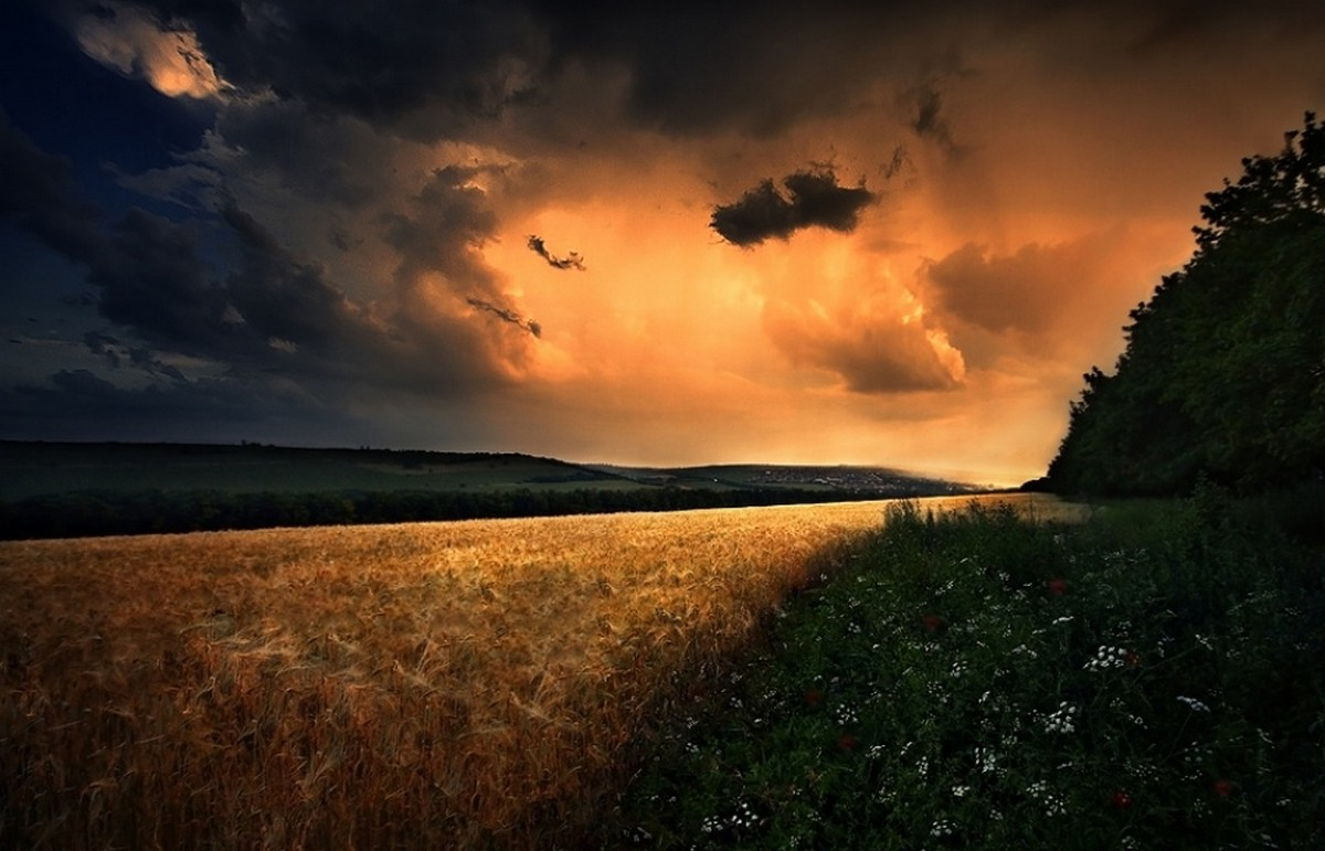 Explosion Wallpaper Abstract 3d Field Wildflowers Clouds Hill Storm Sunset Poland
