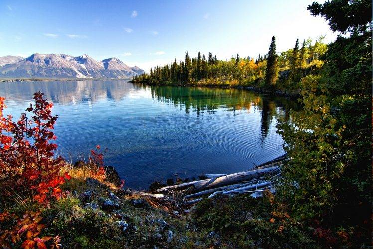 Full Screen Desktop Fall Leaves Wallpaper Lake Mountain Fall Morning Forest Shrubs Water