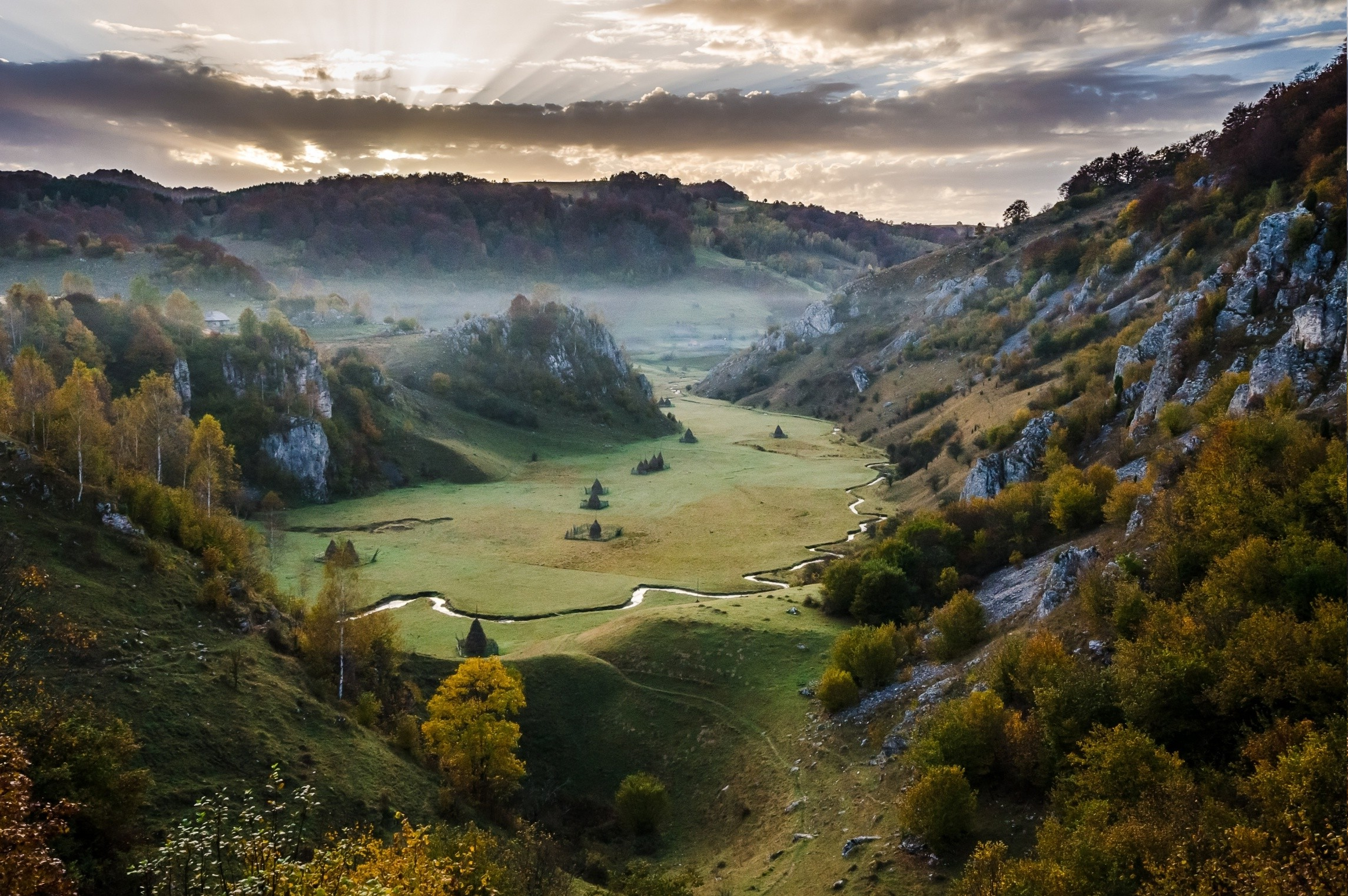 Fall In Love Wallpaper Free Download Fall Sunrise Mountain Valley Mist Grass Romania