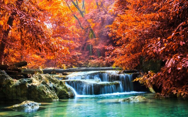 nature landscape waterfall forest