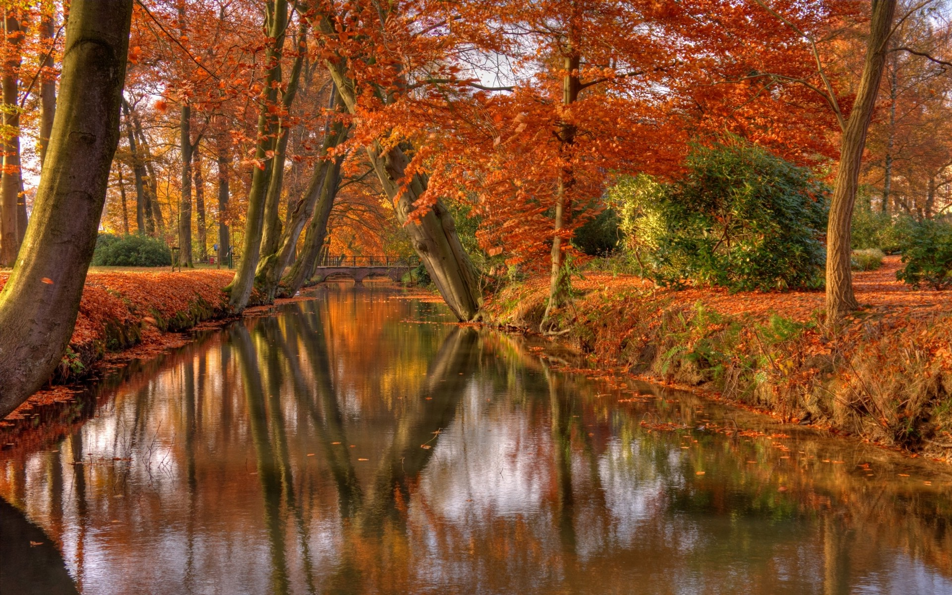 Fall Foliage Wallpaper 1920x1080 Nature Landscape Park Shrubs Trees Leaves Canal