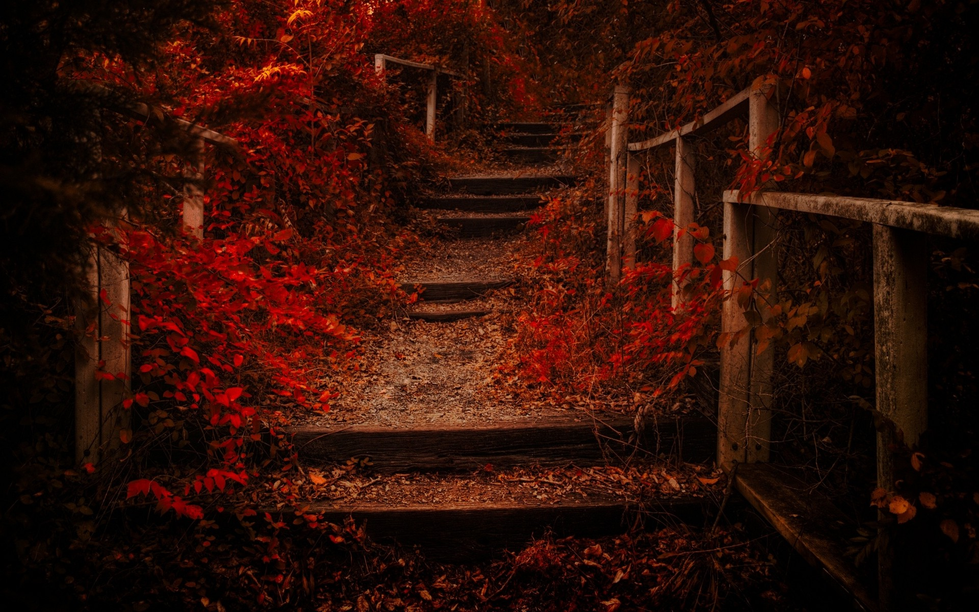 Full Screen Desktop Fall Leaves Wallpaper Nature Landscape Fall Path Leaves Shrubs Red Fence