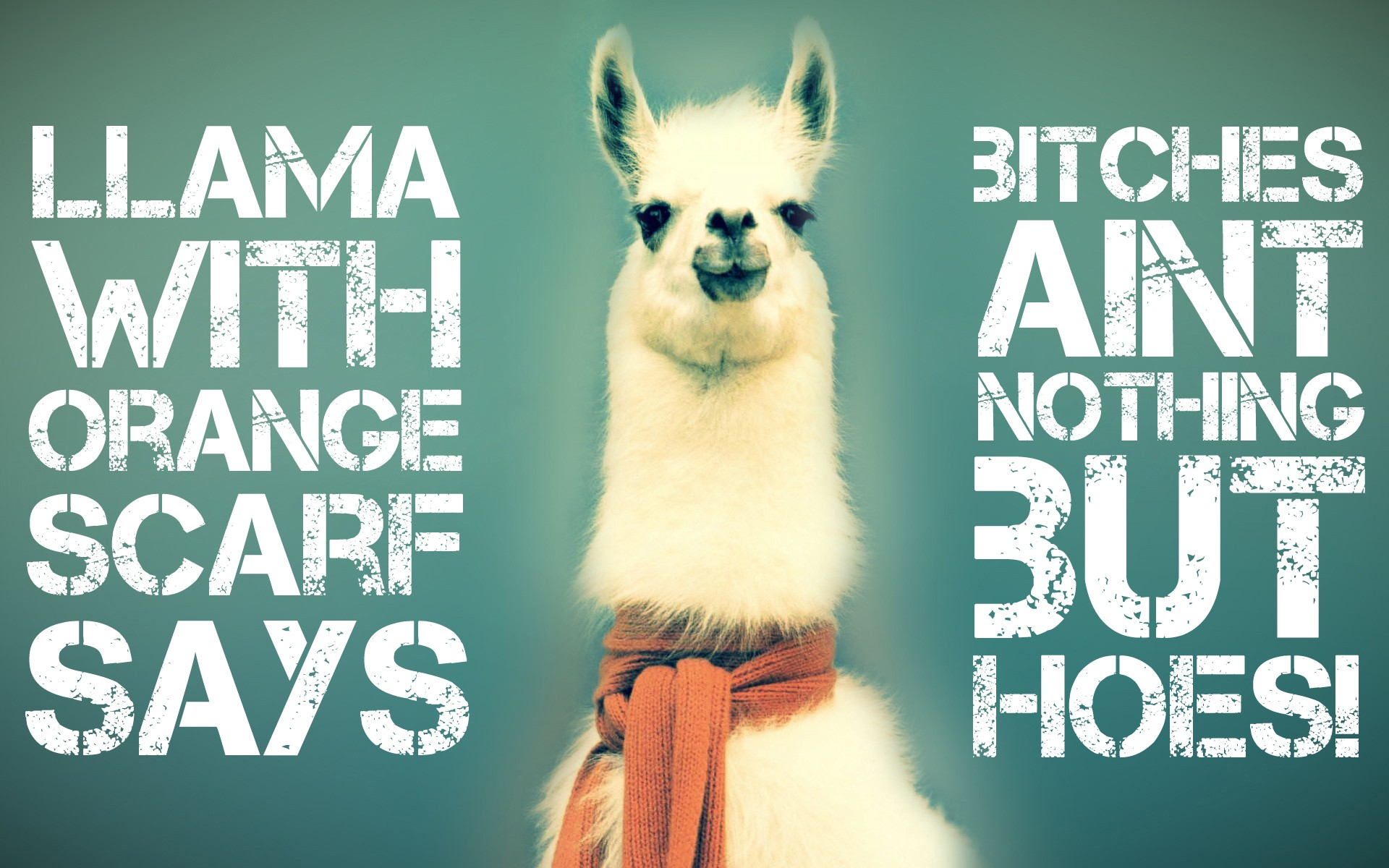 Cute Keep Calm Wallpapers Quote Llamas Wallpapers Hd Desktop And Mobile Backgrounds