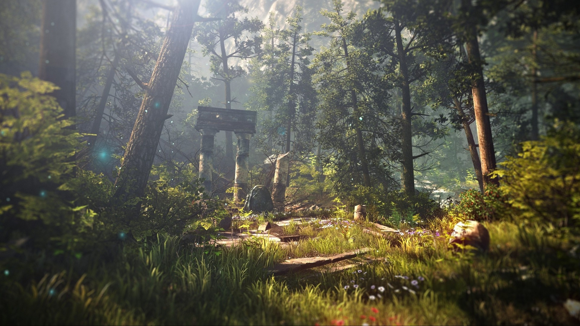 Fall Wallpaper 1440p The Witcher 2 Assassins Of Kings Forest Nature