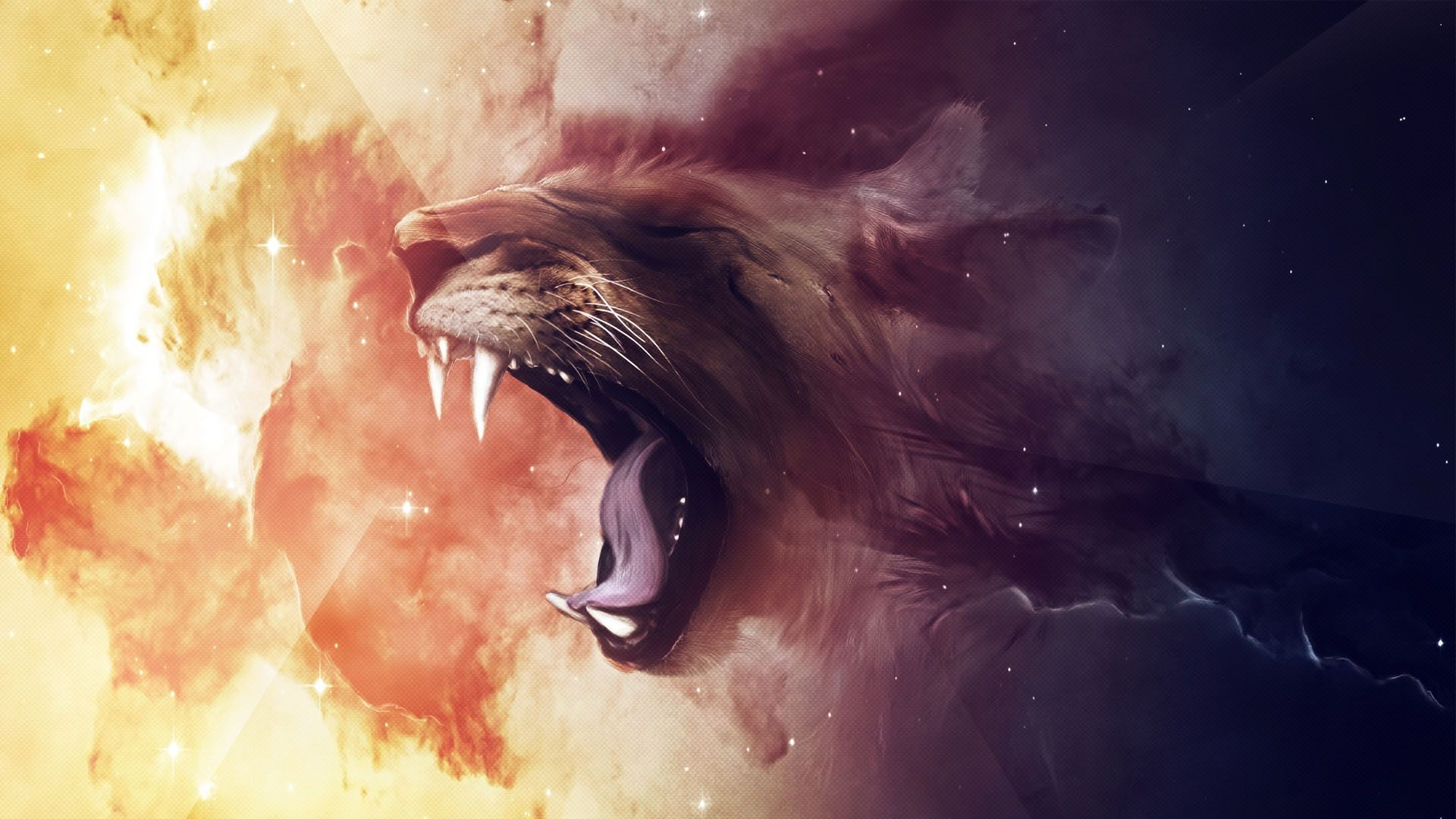 Lion 3d Hd Wallpapers Lion Animals Artwork Space Wallpapers Hd Desktop And