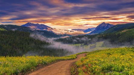 path sunset valley mountain nature forest wallpapers landscape wildflowers road amazing fog clouds mist desktop trees hd backgrounds background resolution