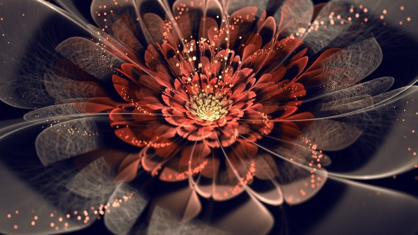 Digital Art Abstract Fractal Flowers Wallpapers