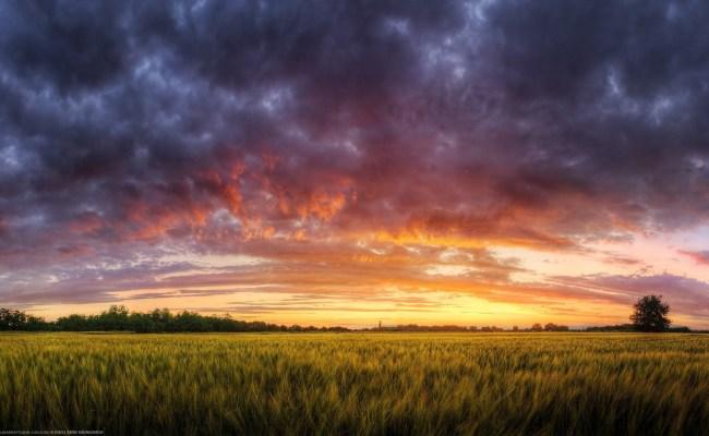 Landscape Field Evening Wallpapers Hd Desktop And