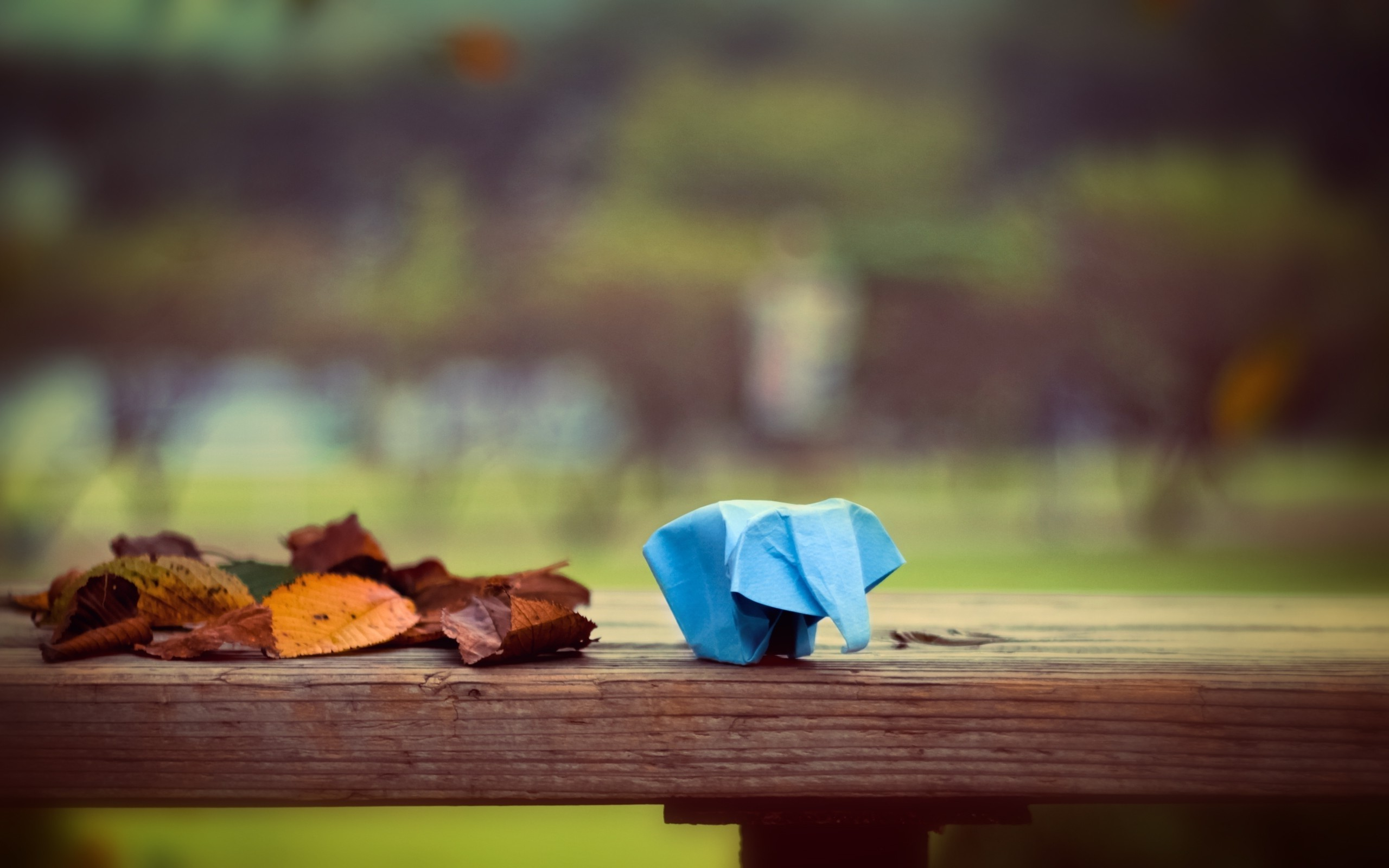 Full Screen Desktop Fall Leaves Wallpaper Leaves Fall Depth Of Field Animals Origami Elephants
