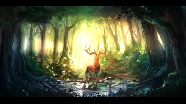 Nature Animals Forest Digital Art Deer Wallpapers Hd Desktop And Mobile Backgrounds