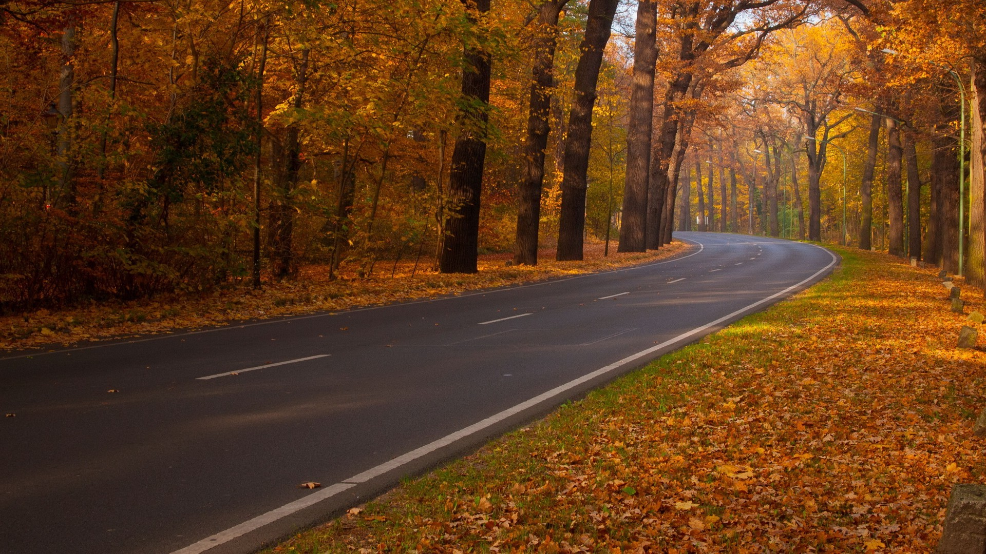 Full Screen Fall Wallpaper Landscape Road Fall Wallpapers Hd Desktop And Mobile