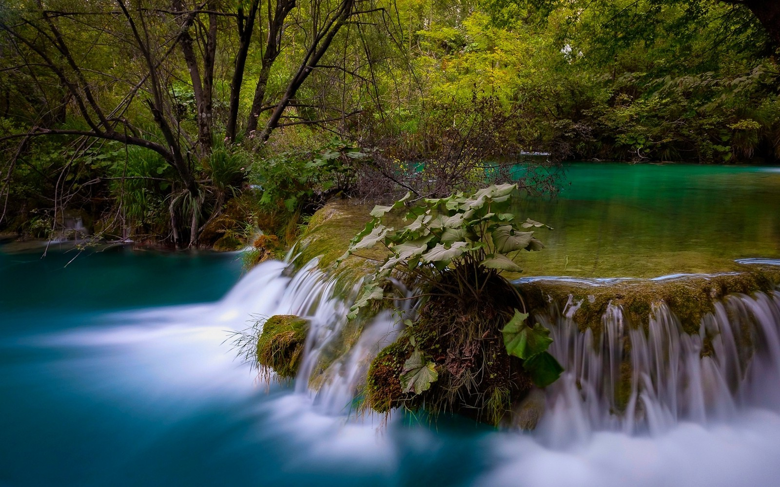 Water Fall Hd Wallpaper 4k Nature Landscape Waterfall Long Exposure Forest Pond