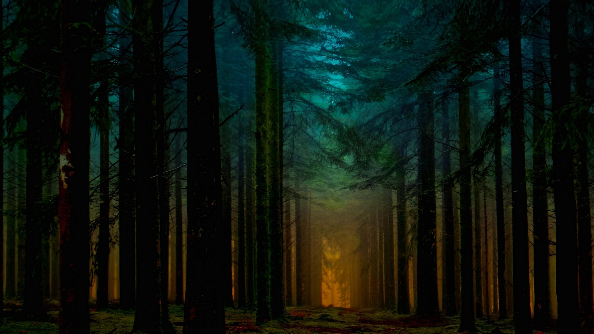 Wallpaper Hutan 3d Landscape Nature Forest Mist Path Sunlight Trees