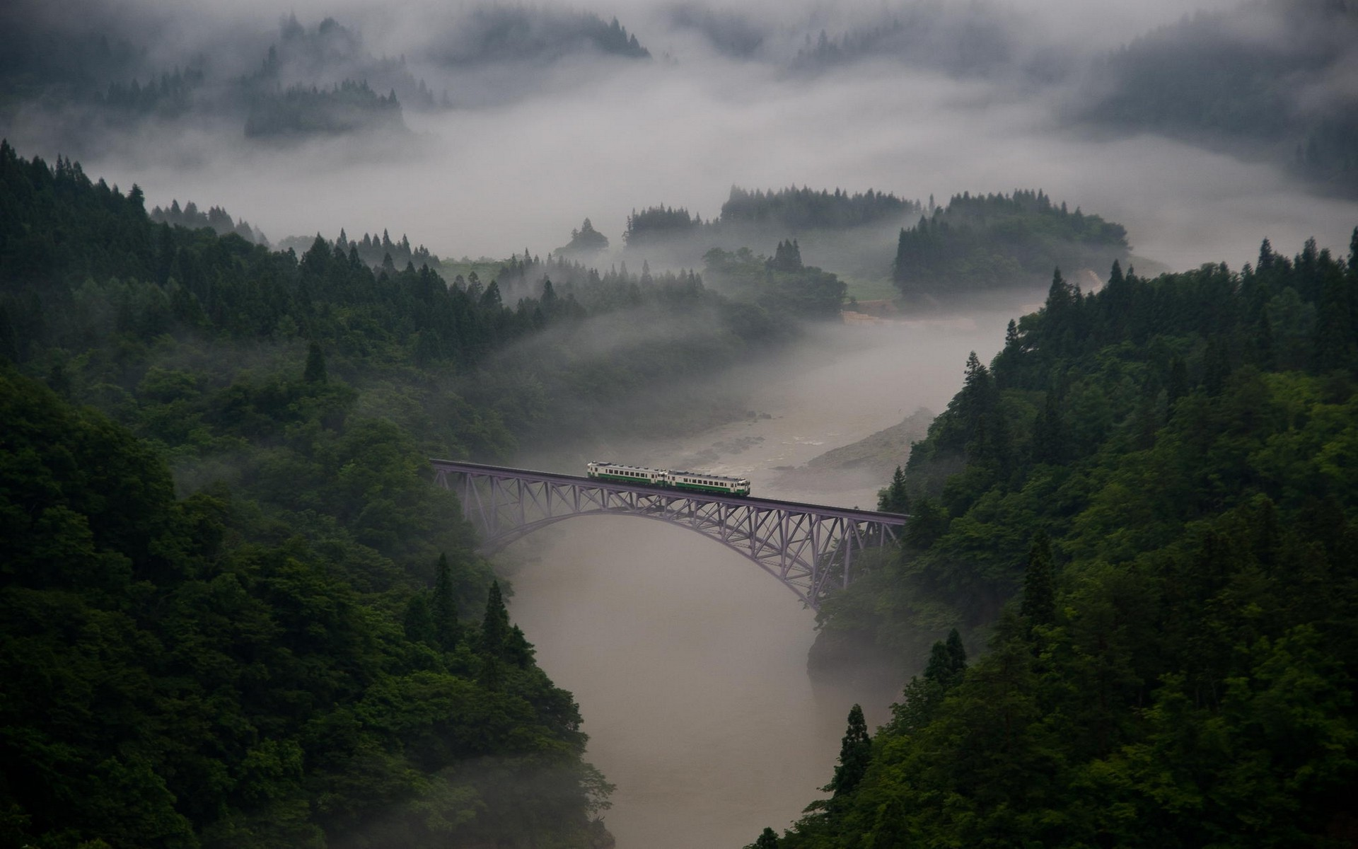 4k Wallpaper 3d National Geographic Landscape Nature Mist Morning Train Bridge Forest