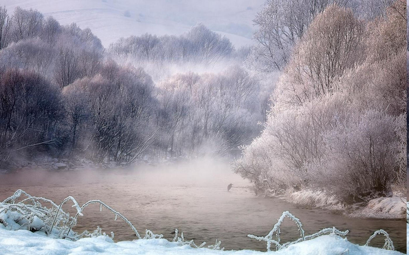 Funny Animated Wallpapers Nature Landscape Winter Mist River Trees Birds Snow