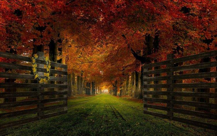 Fall Leaves Computer Wallpaper Nature Landscape Gates Path Grass Trees Fall Leaves