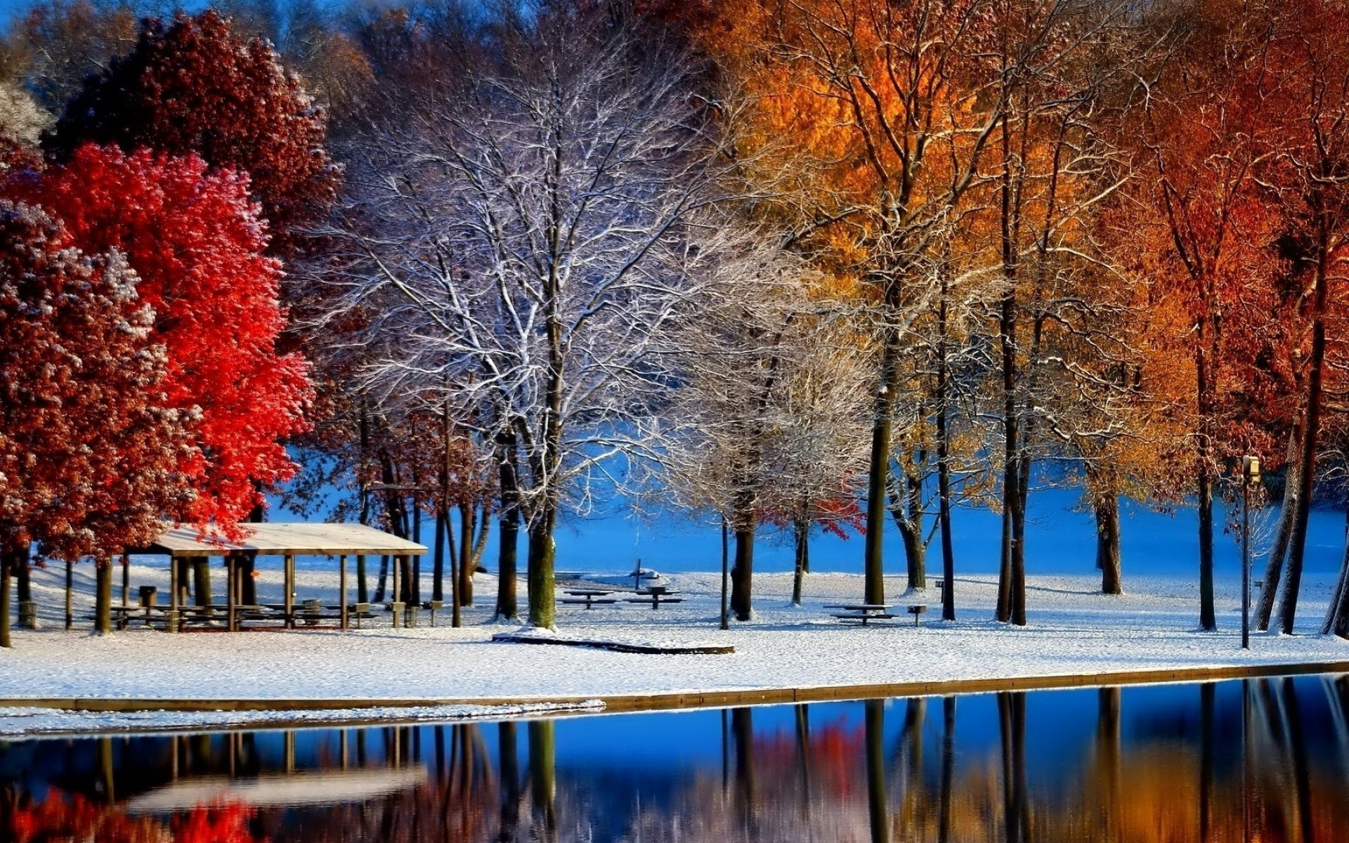 nature Landscape Fall Snow Trees Colorful Water