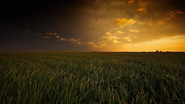 Girls Corn Wallpaper Landscape Field Oklahoma Wallpapers Hd Desktop And