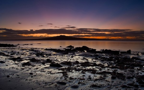 landscape auckland beach sunrise