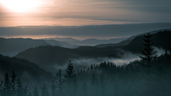 Nature Landscape Trees Forest Pine Mountain Norway Mist Sunrise Hill Clouds