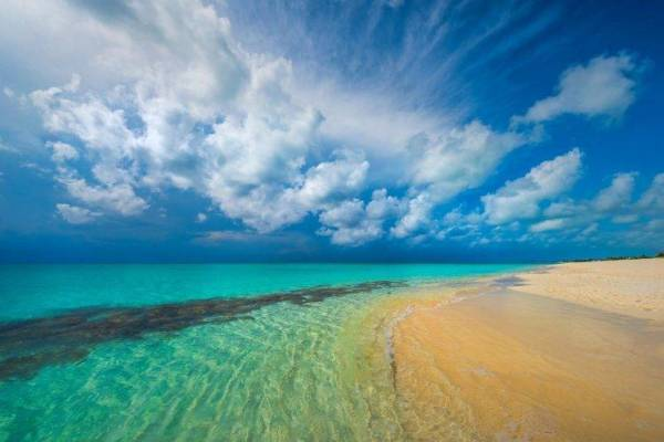 nature landscape tropical beach
