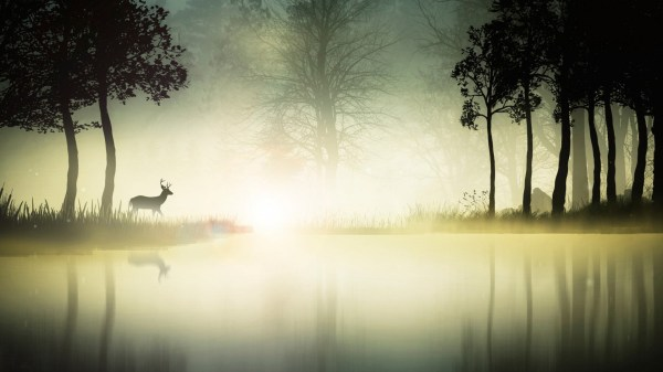 Background Digital Art Landscape Deer