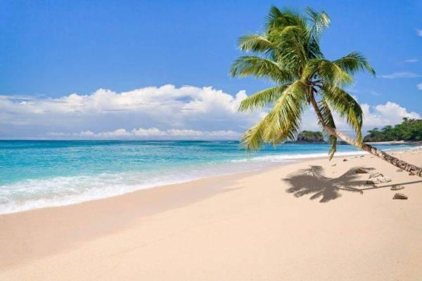 nature landscape tropical island