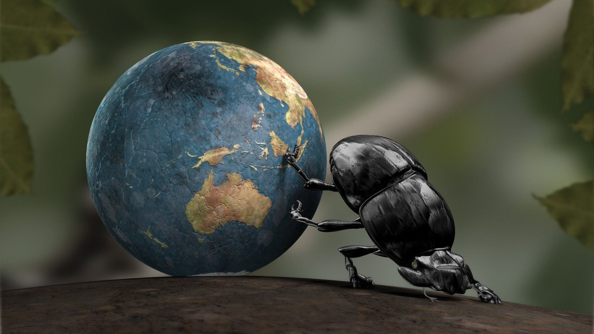 Rolling Girls Wallpaper 1920 Earth Insect Cgi Dung Beetle Crabs Wallpapers Hd