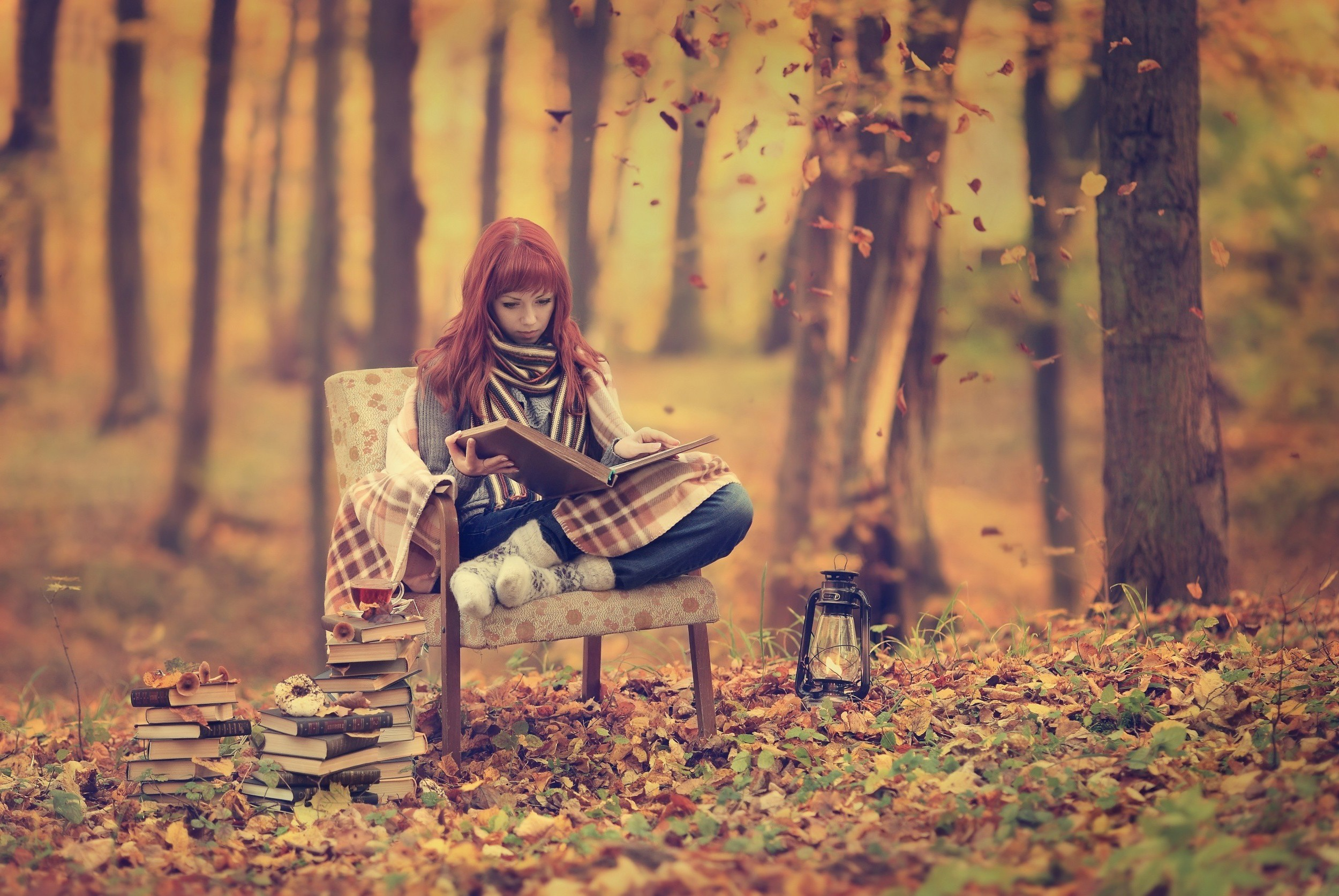 Fall Woodsy Pc Wallpaper Women Fall Reading Forest Wallpapers Hd Desktop And