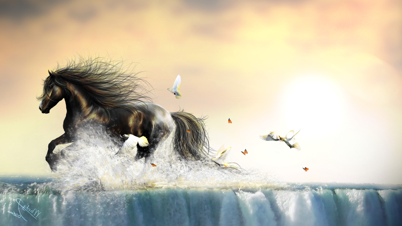 water birds insect butterfly animals horse waterfall doves