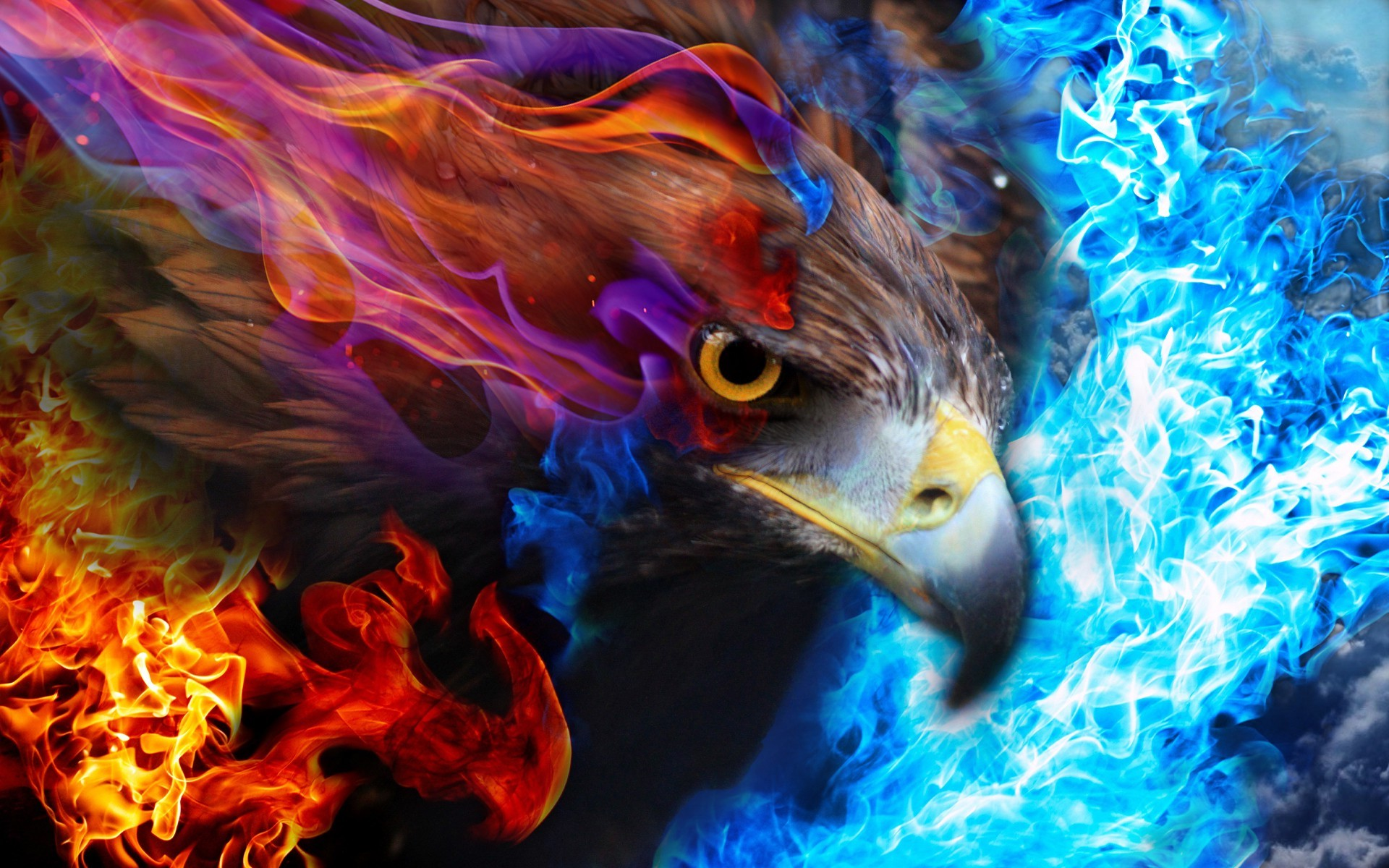 I Letter 3d Wallpapers Eagle Fire Sky Wallpapers Hd Desktop And Mobile Backgrounds