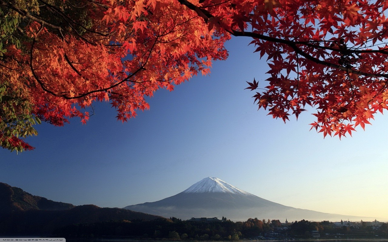 fall. Japan. Trees. Mountain. Sky. Mount Fuji Wallpapers HD / Desktop and Mobile Backgrounds