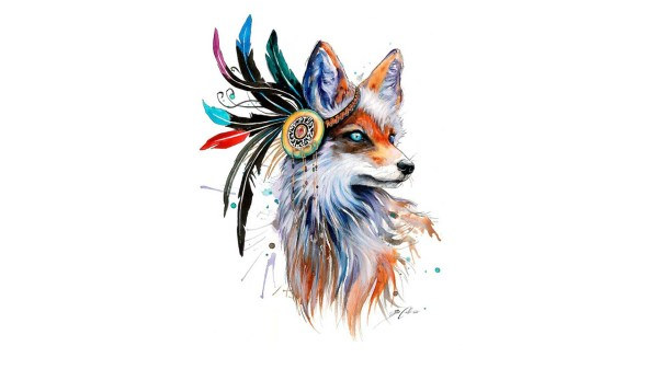 Fox Drawing Feathers Colorful Simple Background