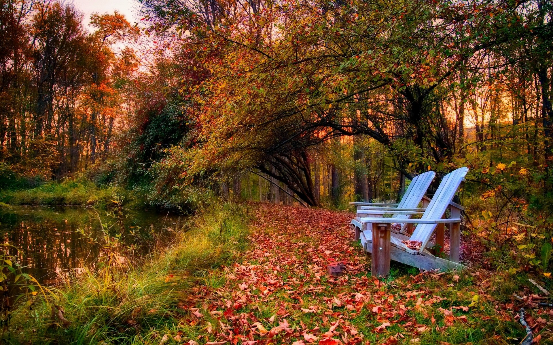 Fall Leaves Watercolor Wallpaper Photography Landscape Nature Park Fall Trees Bench