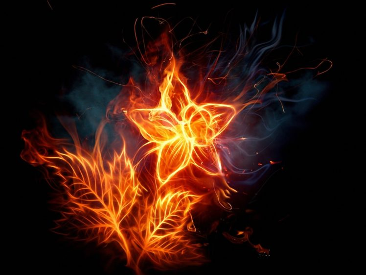 abstract flames flowers fire