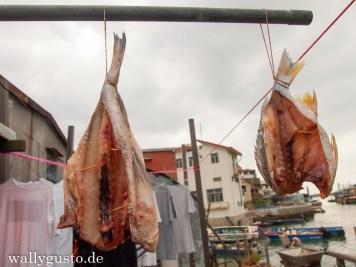 Lantau Tai-O Village (7)