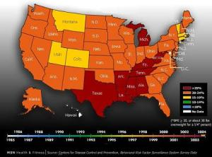 obesity-epidemic rates 2004