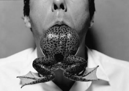 eating-frog