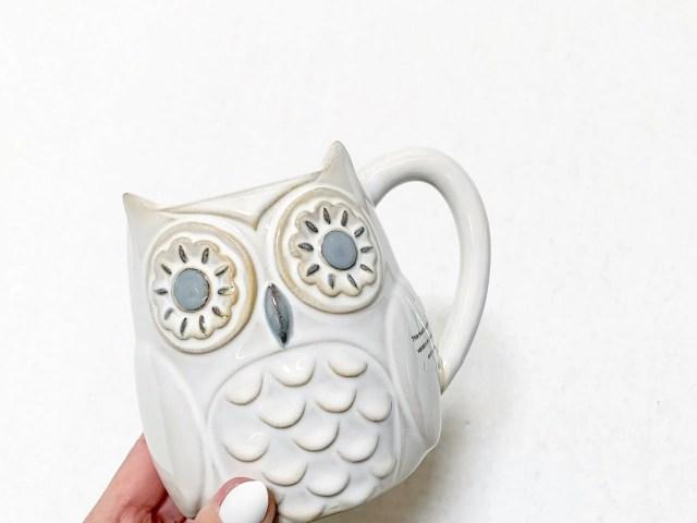 Owl Mug at Walmart