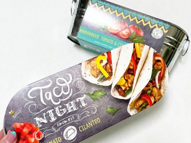 BUZZY Taco Night Tomato and Cilantro Growing Kit