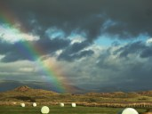 Rainbow over sand hills - Copy