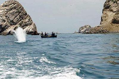 Dynamitfischer in der Supay Bucht.
