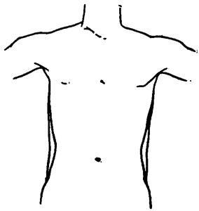 Diagram Of Human Body Outline, Diagram, Free Engine Image