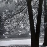 Landscape 32 by walter huber